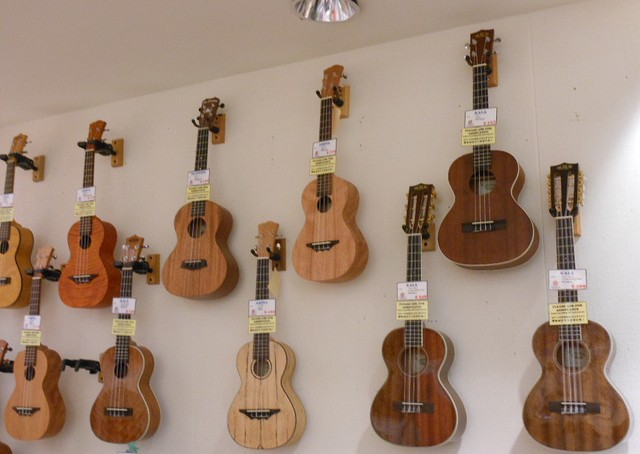 types of ukuleles what are the different kinds of ukes